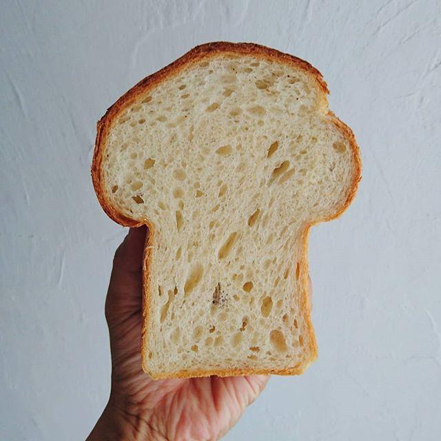 キノコ食パン。型に合う分量まちがえて、キノコすぎてしまったー。・九月からの定期販売に向けて試作。・キノコすぎたけど、レーズン酵母と微量イーストで一晩発酵。しっとりとふんわりで、理想に近づいてきた。#オオトパン #山梨 #食パン#パン屋さん#パンが好き#パン#パンスタグラム#パン販売準備中#通パンベーカリー#bakery#yamanashi #bread