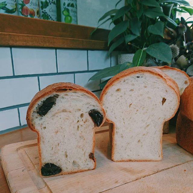 【今週も販売中】@cafe_wine_troll にて、今日も販売中。来週金曜日は、お休みです!@aminature_fruit さんの葡萄のドライフルーツを入れた食パン、作ってみました。と書いてたら売り切れました(/--)/ ・食パン・フォカッチャ・豆乳パン・チーズパン・かぼちゃくるみ・栗白あんぱん・栗クランブルマフィン#オオトパン#甲府#パン屋#パン好き#パンスタグラム